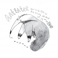 Alex Willmore - Anteater